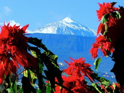 Teide im Winter